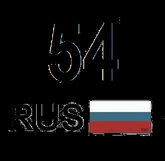 новосибирск, сибирский регион, 54, портал